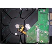 Б/У жёсткий диск 500Gb Western Digital WD5000AVVS (WD AV-GP 500 GB) 5400 rpm SATA (Бронницы)